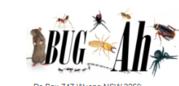Bugah Pest Control