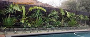 Buy Black Bamboo Fencing Panels in NSW