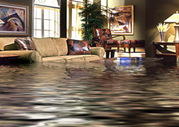 Water Damage and Restoration Services in Brisbane