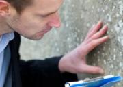 Get Termite Treatment In Gold Coast At Elite Maintenance Servi