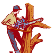 Best Tree Removal Services in Adelaide