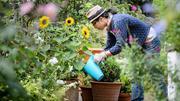Garden Care Services Canberra