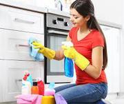 Bond Cleaning Springfield