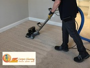 What Kind of Cleaning is Best for Your Carpet? Steam Cleaning or Dry C